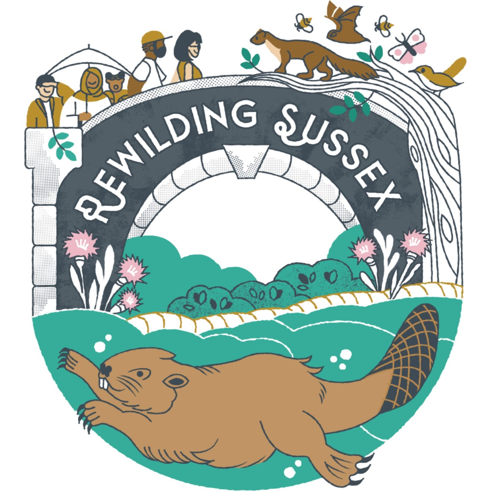 Rewilding Sussex